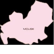 m-molise